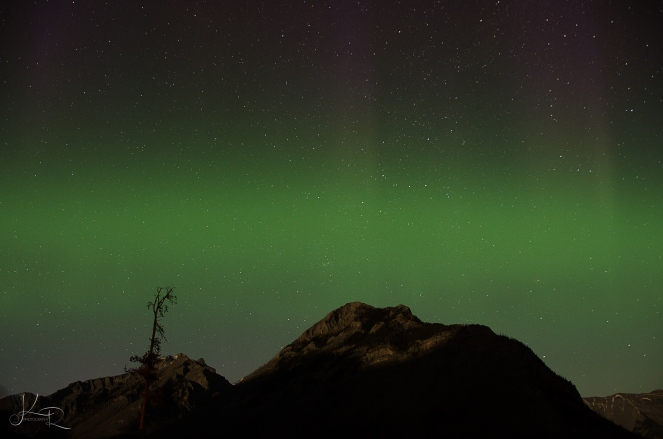 Northern-Lights-173-WEB