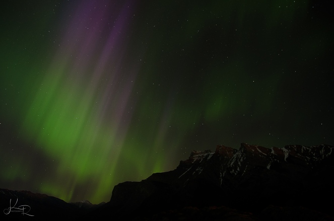 Northern-Lights-326-WEB